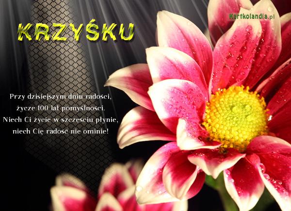 ¯yczenia dla Krzysztofa