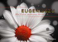 eKartki elektroniczne z tagiem: e-Kartka imieninowa Dla Eugeniusza,