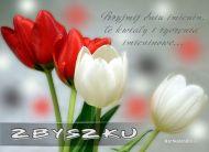 eKartki Imienne męskie Imieninowa kartka dla Zbyszka,
