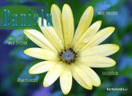 eKartki Imienne męskie Imieninowy kwiat dla Daniela,