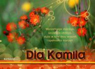 eKartki Imienne mêskie Imieniny Kamila,