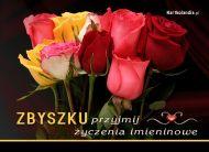 eKartki Imienne mêskie Imieniny Zbyszka,