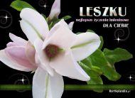 eKartki Imienne mêskie Kartka dla Leszka,
