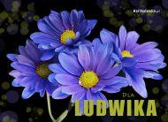 eKartki elektroniczne z tagiem: e-Kartka imieninowa Kartka dla Ludwika,
