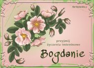 eKartki Imienne męskie Kwiaty dla Bogdana,