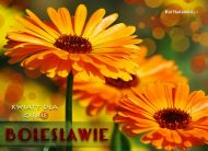 eKartki Imienne męskie Kwiaty dla Bolesława,