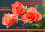 eKartki Imienne męskie Róże dla Bronisława,