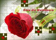 eKartki elektroniczne z tagiem: Kartka imieninowa Róża dla Waldemara,