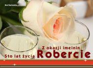 eKartki Imienne męskie Sto lat życia Robercie,
