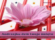eKartki elektroniczne z tagiem: Andrzej Święto Andrzeja,