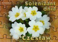 eKartki Imienne mêskie Solenizant dnia,