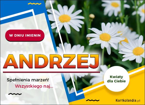 eKartki elektroniczne z tagiem: Życzenia na imieniny Andrzej - Spełnienia marzeń!,
