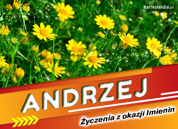 eKartki elektroniczne z tagiem: Kwiaty Andrzej - Życzenia z okazji Imienin,