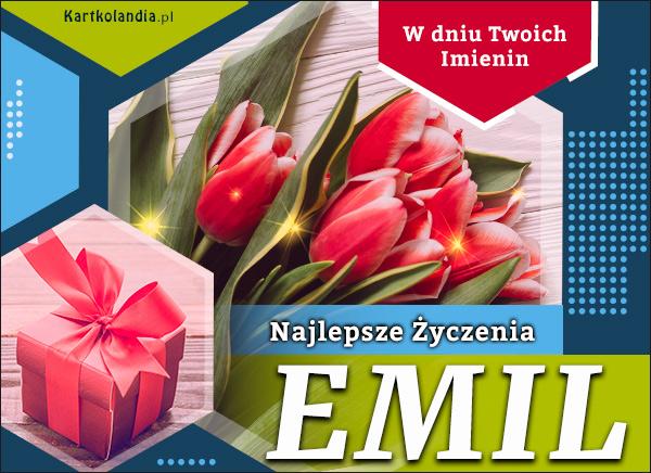 eKartki elektroniczne z tagiem: Kwiaty Emil - W dniu Twoich Imienin,