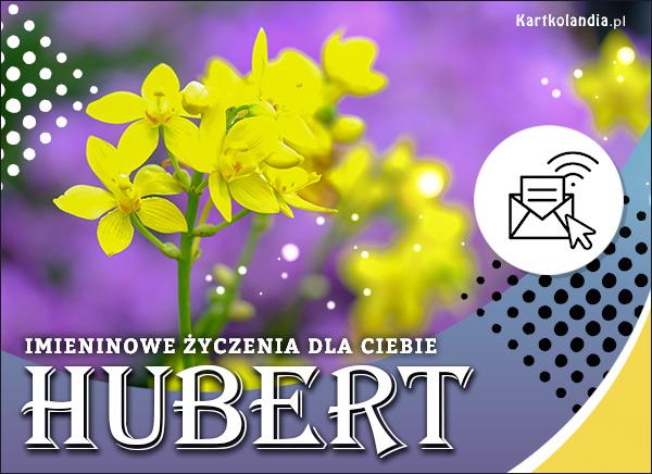 eKartki elektroniczne z tagiem: Kwiaty Hubert - Kartka na Imieniny,
