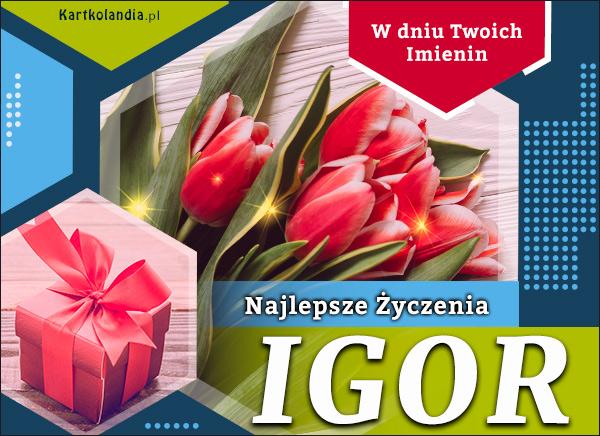 eKartki elektroniczne z tagiem: Życzenia na imieniny Igor - W dniu Twoich Imienin...,