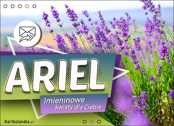 eKartki elektroniczne z tagiem: Życzenia na imieniny Imieninowe kwiaty dla Ariela,