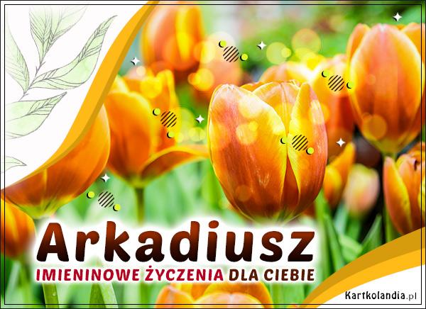 eKartki elektroniczne z tagiem: Kwiaty Imieninowe tulipany dla Arkadiusza,