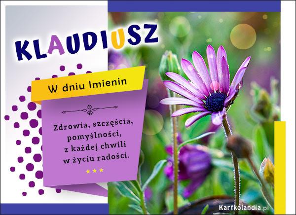 eKartki elektroniczne z tagiem: Życzenia na imieniny Imieninowe życzenia dla Klaudiusza,