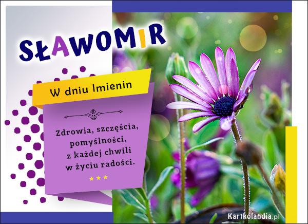 eKartki elektroniczne z tagiem: Kwiaty Imieninowe życzenia dla Sławomira,