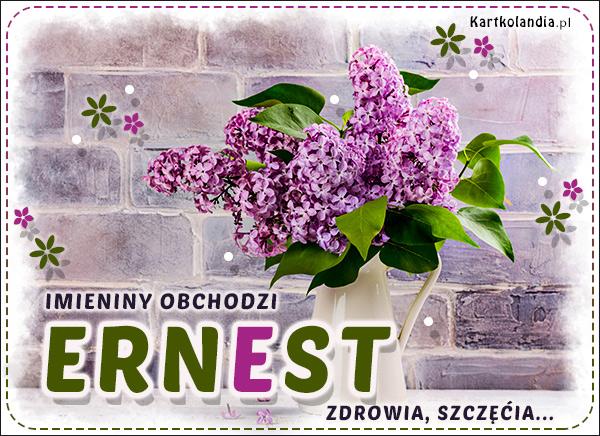 eKartki elektroniczne z tagiem: Kwiaty Imieniny obchodzi Ernest,