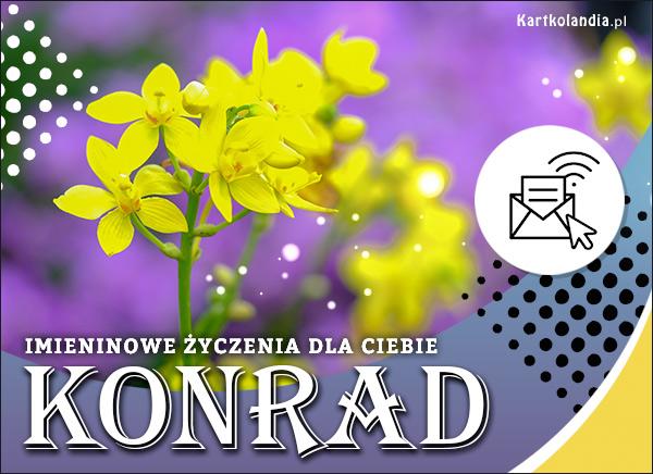 eKartki elektroniczne z tagiem: Życzenia na imieniny Konrad - Kartka na Imieniny,