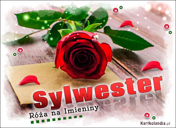 eKartki elektroniczne z tagiem: Życzenia na imieniny Róża na Imieniny dla Sylwestra,