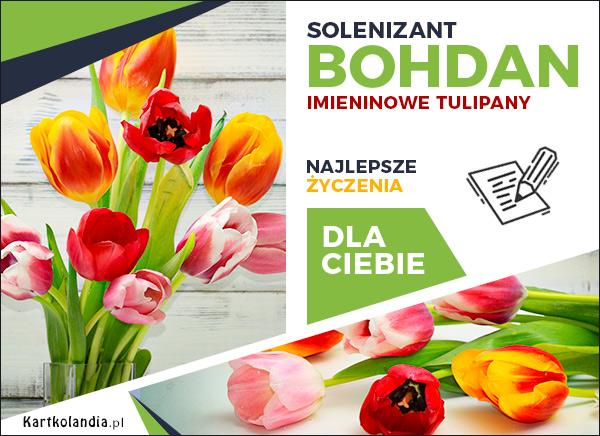 eKartki elektroniczne z tagiem: Kwiaty Solenizant Bohdan,