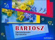 eKartki Imienne Męskie Bartosz - Imieninowe Życzenia,