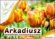 eKartki Imienne Męskie Imieninowe tulipany dla Arkadiusza,