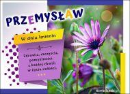 eKartki Imienne Męskie Imieninowe życzenia dla Przemysława,