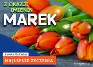 eKartki Imienne Męskie Marek - Z okazji Imienin...,