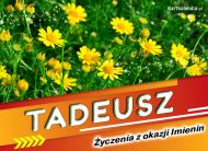 eKartki Imienne Męskie Tadeusz - Życzenia z okazji Imienin,