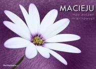eKartki Imienne mêskie Imieninowy kwiat,