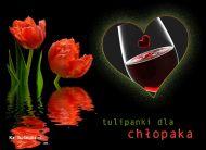 eKartki Dzieñ Ch³opaka Tulipanki dla ch³opaka,