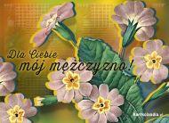 eKartki elektroniczne z tagiem: Kartki na Dzień Chłopaka online Kartka z kwiatami,