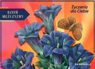 eKartki elektroniczne z tagiem: Kartka dla Mężczyzny Kwiaty i życzenia,