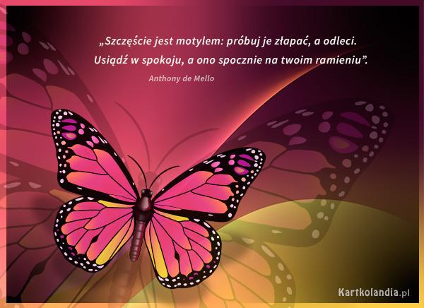 Szczęście jest motylem