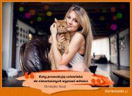 eKartki elektroniczne z tagiem: Kot Wyznania miłości,