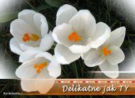 eKartki Kwiaty Delikatne jak Ty,