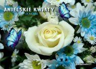 eKartki Kwiaty Anielskie kwiaty,