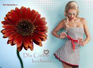 eKartki Kwiaty Dla Ciebie Kochanie,