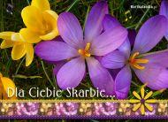 eKartki Kwiaty Dla Ciebie Skarbie,