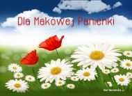 eKartki Kwiaty Dla Makowej Panienki,