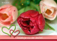 eKartki Kwiaty Dziękuję Ci, że Jesteś,