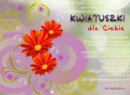 eKartki Kwiaty Kwiatuszki dla Ciebie,