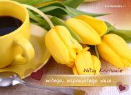 eKartki Kwiaty Mi³e powitanie,