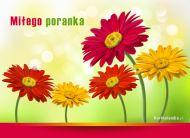 eKartki Kwiaty Miłego poranka,