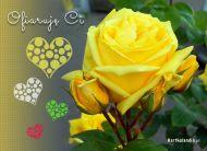 eKartki Kwiaty Ofiaruję Ci,
