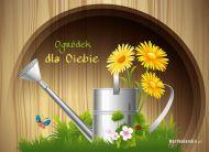eKartki Kwiaty Ogródek dla Ciebie,